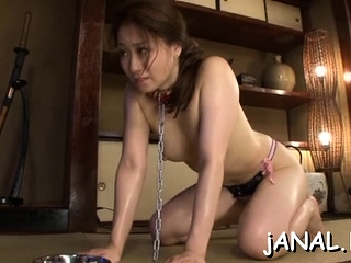 Sweet asian college babe endures cock in both snatch with an increment of ass